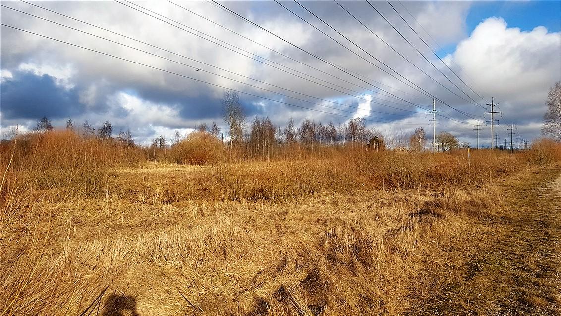 Pārdod zemi Grobiņā privātmāju būvniecībai. ID: 192